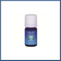 Huile essentielle Eucalyptus Radié 10ml - Oshadhi