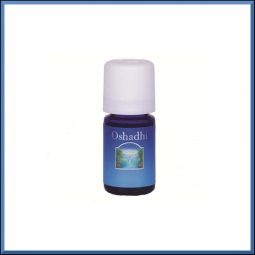 Huile essentielle Laurier Noble 5ml - Oshadhi