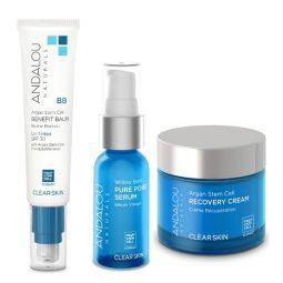 Coffret cadeau vegan soins visage peau grasse - Andalou Naturals