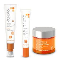 Coffret cadeau vegan soins visage peau mixte - Andalou Naturals
