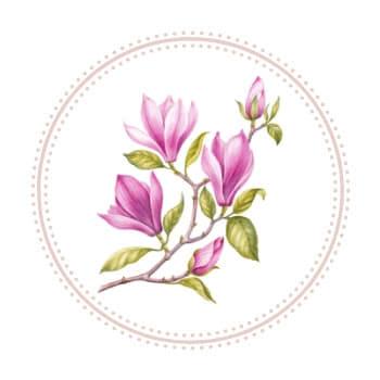 Cosmétiques naturels : des produits de beauté formulés à base d'ingrédients naturels